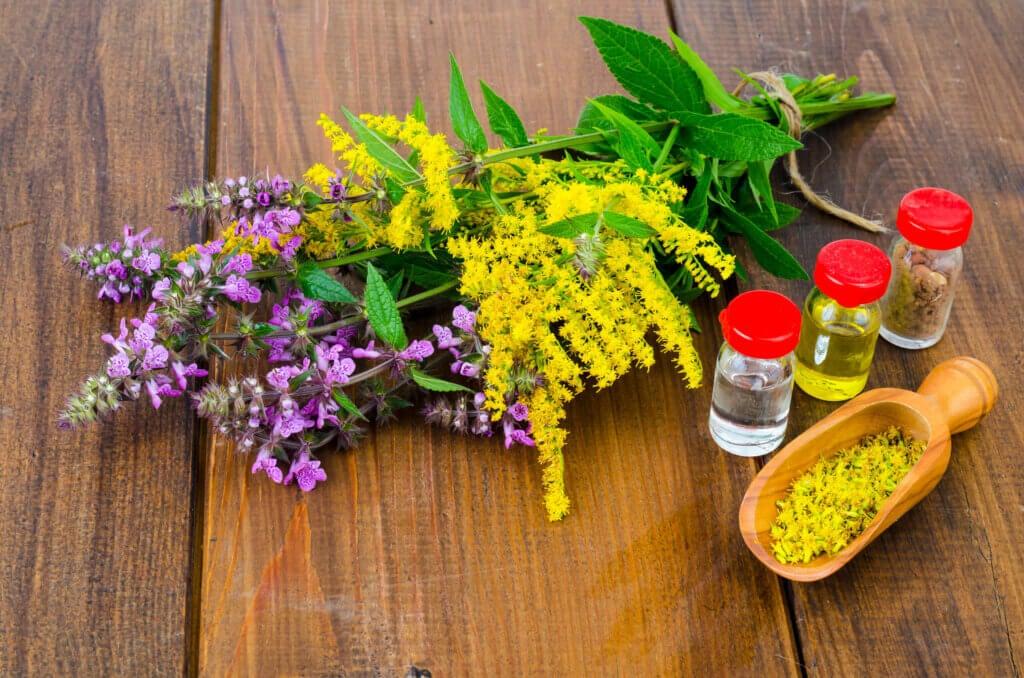 Diferencias entre homeopatía y fitoterapia