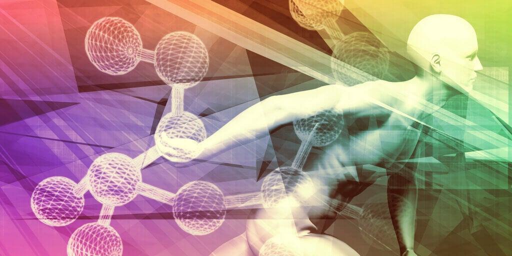 Différences entre les hormones et les neurotransmetteurs